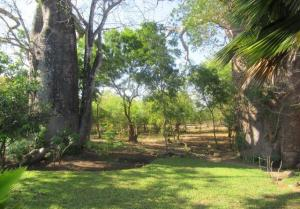 Land for sale Diani, Diani, Mombasa Diani Mombasa
