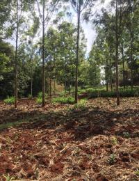 Land for sale Kiserian, Matasia Matasia Kiserian
