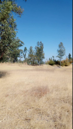 Land for sale Snake Park Harare High Density Harare