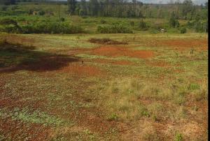 Land for sale ... Runda Nairobi