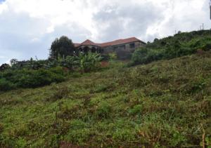 Land for sale Misindye,, Mukono district Mukono Mukono Central
