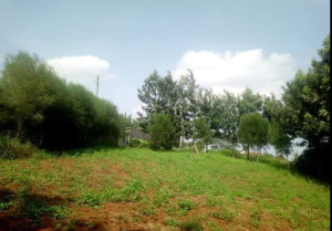 Land for sale ... Kabati Thika