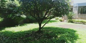 Land for sale Kileleshwa Nairobi