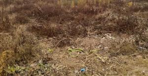 Stands & Residential land Land for sale Mkoba Gweru Midlands