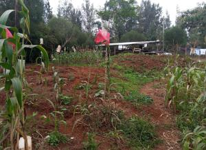 Land for sale Steam Drive Nairobi, Thome, Nairobi Thome Nairobi