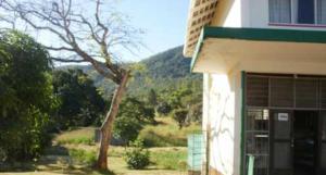 Land for sale Nyanga Manicaland