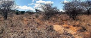 Land for sale C103 Kajiado County, Namanga, Namanga Namanga Namanga