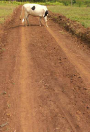 Land for sale Mukono Central