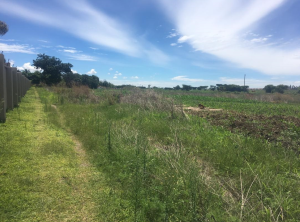 Land for sale Mount Pleasant Harare North Harare