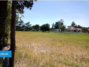 Land for sale - Sunridge Harare West Harare