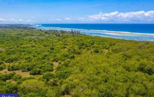 Land for sale 22 Acre Beachfront Plot FOR Sale IN Tiwi Near Traveller Beach Hotel, Only 2km Off... Ukunda Ukunda