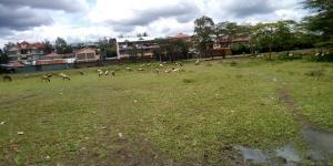 Land for sale Ongata Rongai Nairobi West Nairobi
