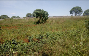 Residential Land for sale Ruiru Riruta Dagoretti South Nairobi