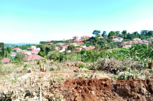 Land for sale - Kiboga Central