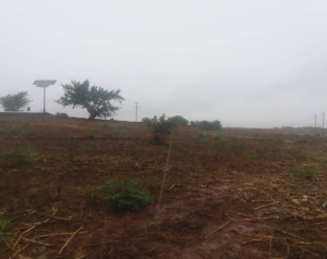 Stands & Residential land Land for sale Chinhoyi Mashonaland West