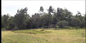 Land for sale - Kikambala Kilifi South Kilifi
