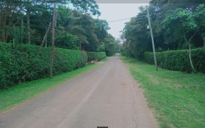 Land for sale Milima Rd  Karen Nairobi