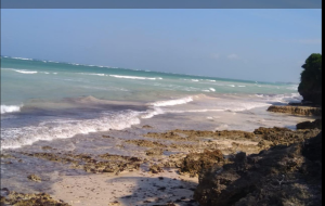 Land for sale diani beach road  Diani Msambweni Kwale