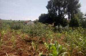Agricultural Land for sale - Kiambu Road Kiambu Road Nairobi
