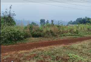 Land for sale Ndenderu Kikuyu Kiambu