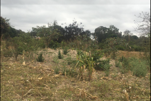 Land for sale Siakago Town Embu Embu