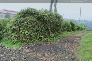 Land for sale Ndenderu  Limuru Central Kiambu