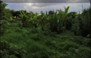 Land for sale Lavington Green Lavingtone Nairobi