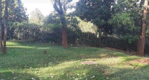 Land for sale Loresho Nairobi