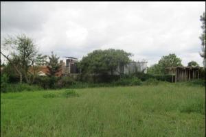 Land for sale Ruiru Mugutha Ruiru Ruiru Kiambu