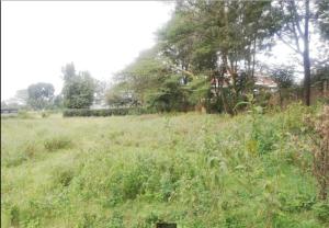 Land for sale - Karen Langata Nairobi