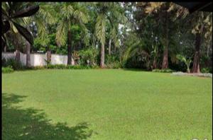 Land for sale Mageta Lavingtone Nairobi
