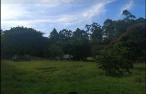 Land for sale Apple Cross Lavingtone Nairobi