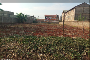 Land for sale Kiamumbi Nairobi