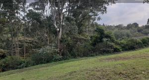 Land for sale 3 Askari Lane Lower Kabete Nairobi