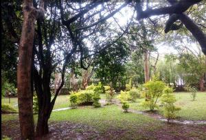 Land for sale - Kilimani Nairobi