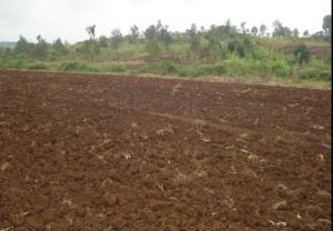Land for sale Makuyu Maragwa Murang'a