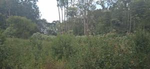 Land for sale Ngong Rd Nairobi
