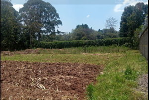 Land for sale Karen Langata Nairobi