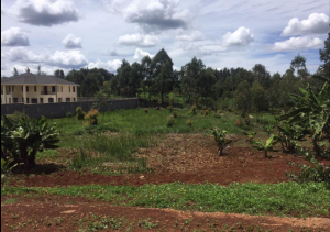 Land for sale Mumwe Land Runda Nairobi