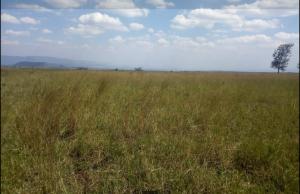 Land for sale Longonot Rd K Naivasha East Nakuru