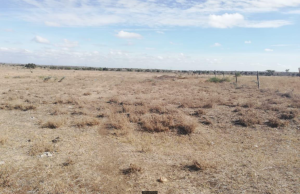 Land for sale - Athi River Area Athi RIver Machakos