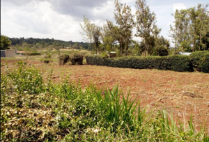 Land for sale - Ngong Kajiado