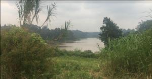 Land for sale - Limuru Central Kiambu