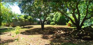 Land for sale Windy Ridge Karen Langata Nairobi