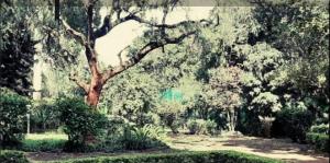 Land for sale - Spring Valley Westlands Nairobi