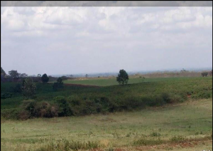 Land for sale - Kamburu Kiambu