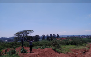 Land for sale Tigoni Limuru Central Kiambu
