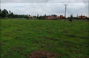 Land for sale - Juja Kiambu