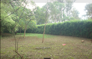 Land for sale Runda Grove Runda Westlands Nairobi