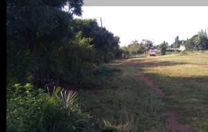 Land for sale diani beach road mombasa Diani Msambweni Kwale